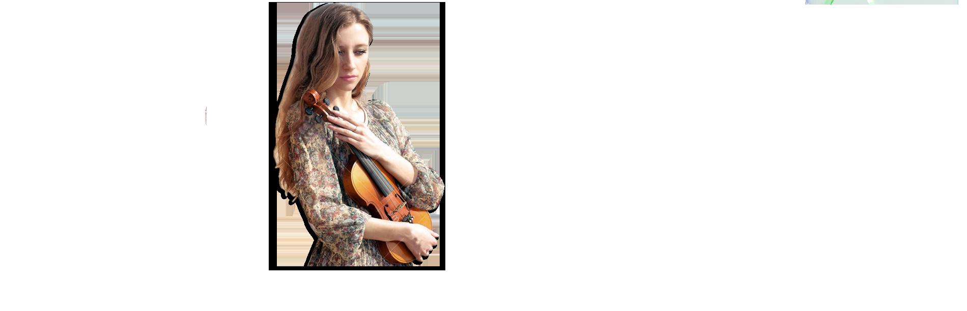 ヨーロッパのバイオリンチェロの弓